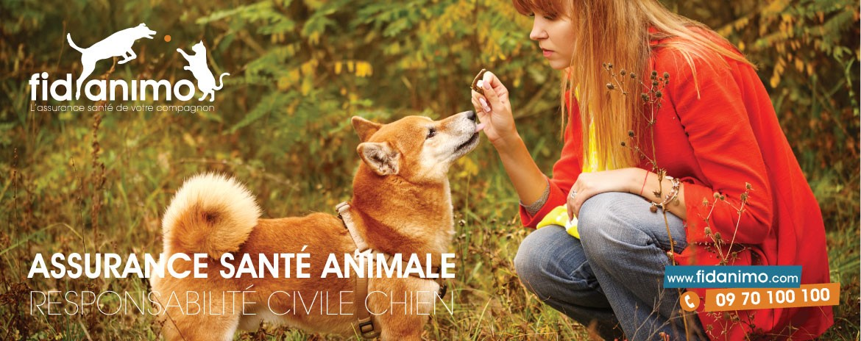 fidanimo assurance santé animale