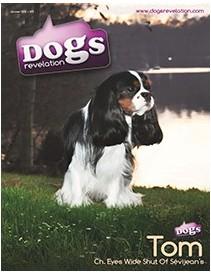 Dogs Revelation N3