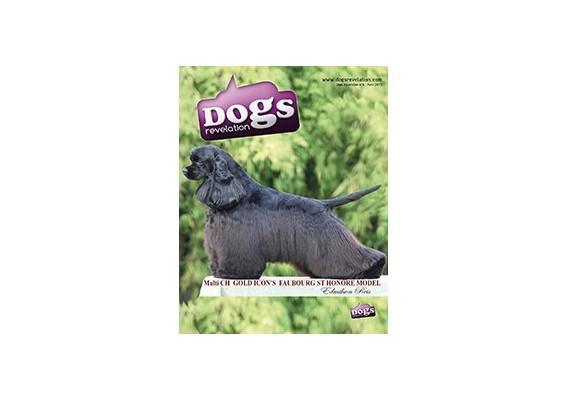 Dogs Revelation N°6