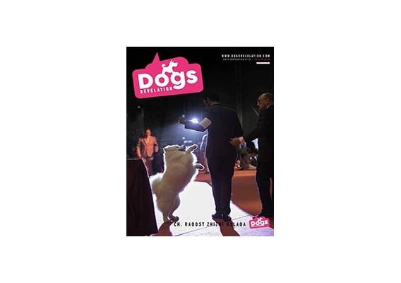 Dogs Revelation N°13