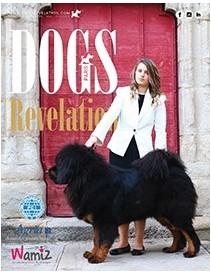 Dogs Revelation N°23