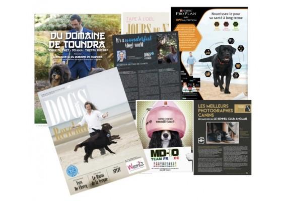 Envois magazine par courrier pour 1 an  (6 numéros)
