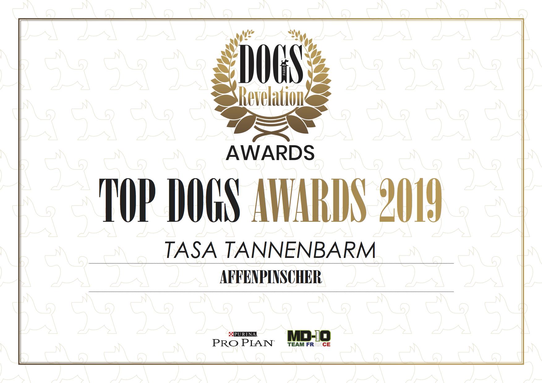 Top Dogs 1.jpg